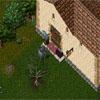 Ultima Online 30056