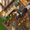 Ultima Online 30063