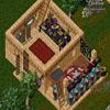 Ultima Online 30064