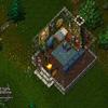 Ultima Online 30073