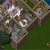 Ultima Online 30075