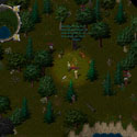 Ultima Online Brigand_Camp