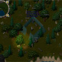 Ultima Online Orc_Camp